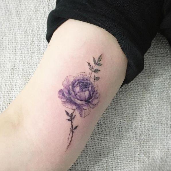 Purple rose by Tattooist Flower