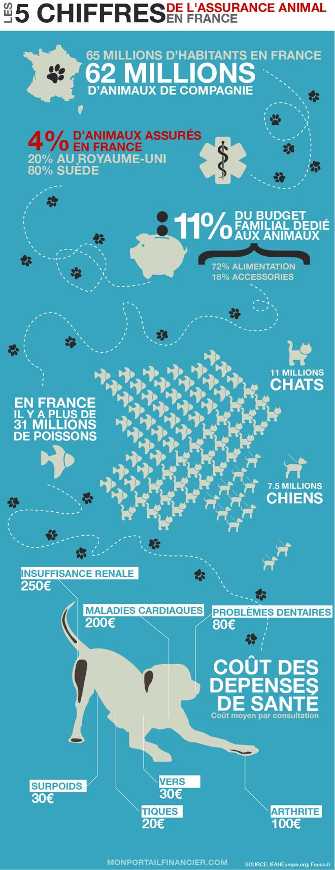 Savez-vous que la France est le premier pays d'Europe en nombre d'animaux ? Combien dépensent en moyenne les Français pour la santé de leurs animaux de compagnie ? Mon Portail Financier vous emmène faire un tour d'horizon de l'assurance animale !