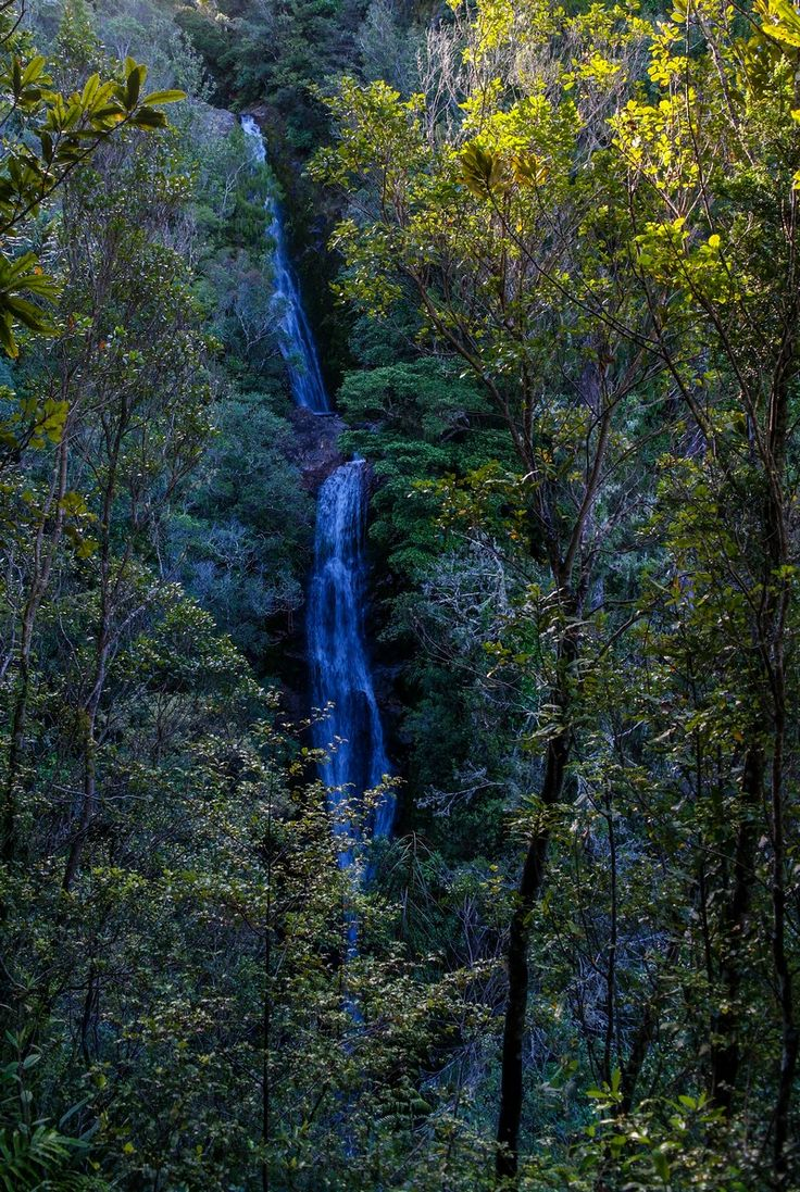 Wentworth Valley Waterfall