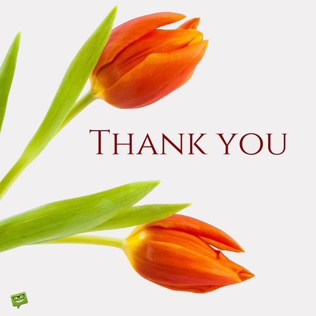 Thank you Images to Help you Express your Gratitude