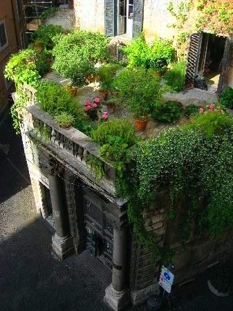 A roof terrace garden like this above the garage and carport.