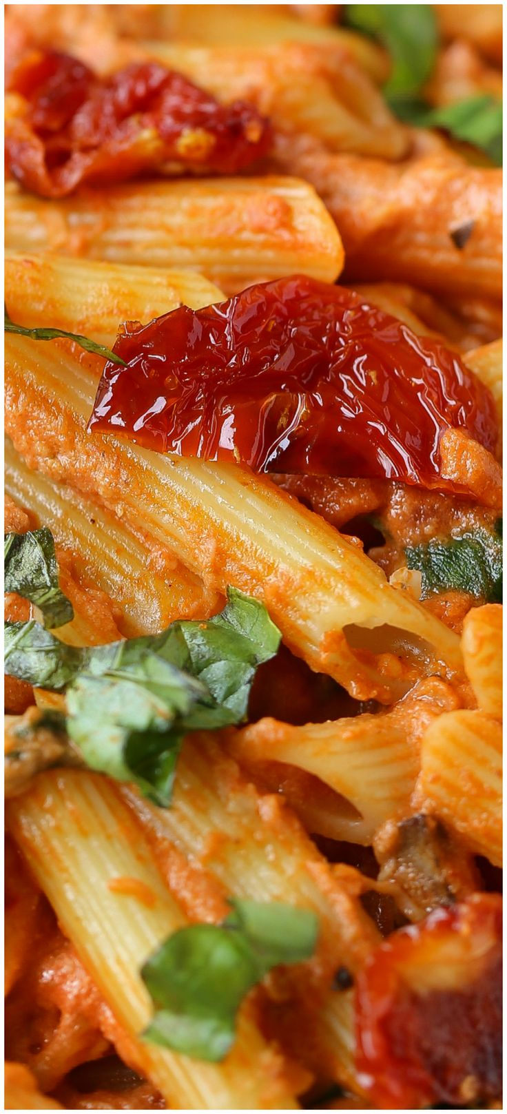 Mozzarella Penne Rosa Pasta with Sun-Dried Tomatoes and Spinach.