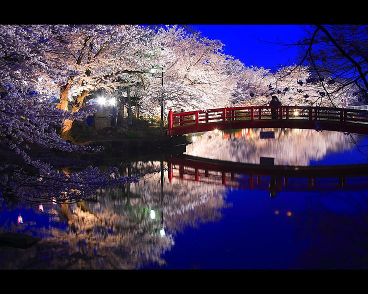 20 best Japanese Night View images on Pinterest Asia Beautiful