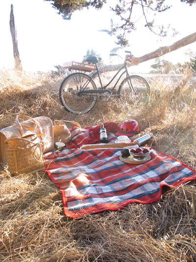 picnics. better temperature and fewer bugs than summer picnics!