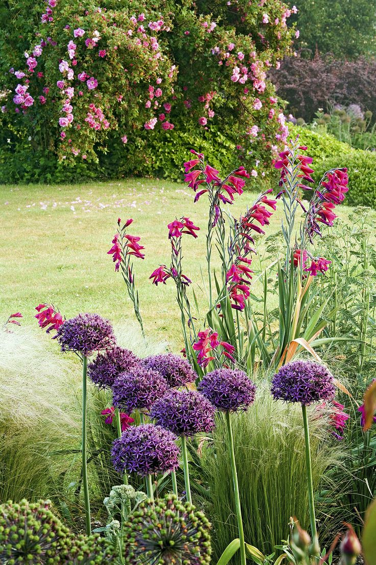 les 25 meilleures id es de la cat gorie massif fleurs sur pinterest jardin massif les talus. Black Bedroom Furniture Sets. Home Design Ideas