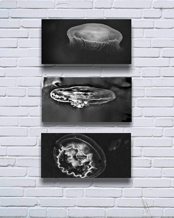Check out this item in my Etsy shop https://www.etsy.com/ca/listing/553885392/jelly-vision-canvas-print-set-9x18