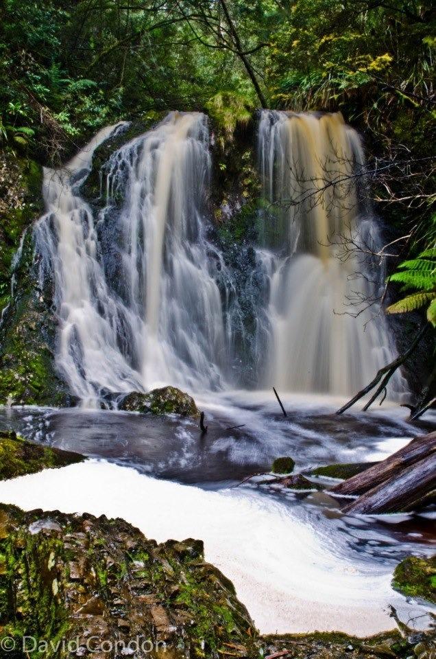 Hogarth Falls Strahan Tasmania Australia