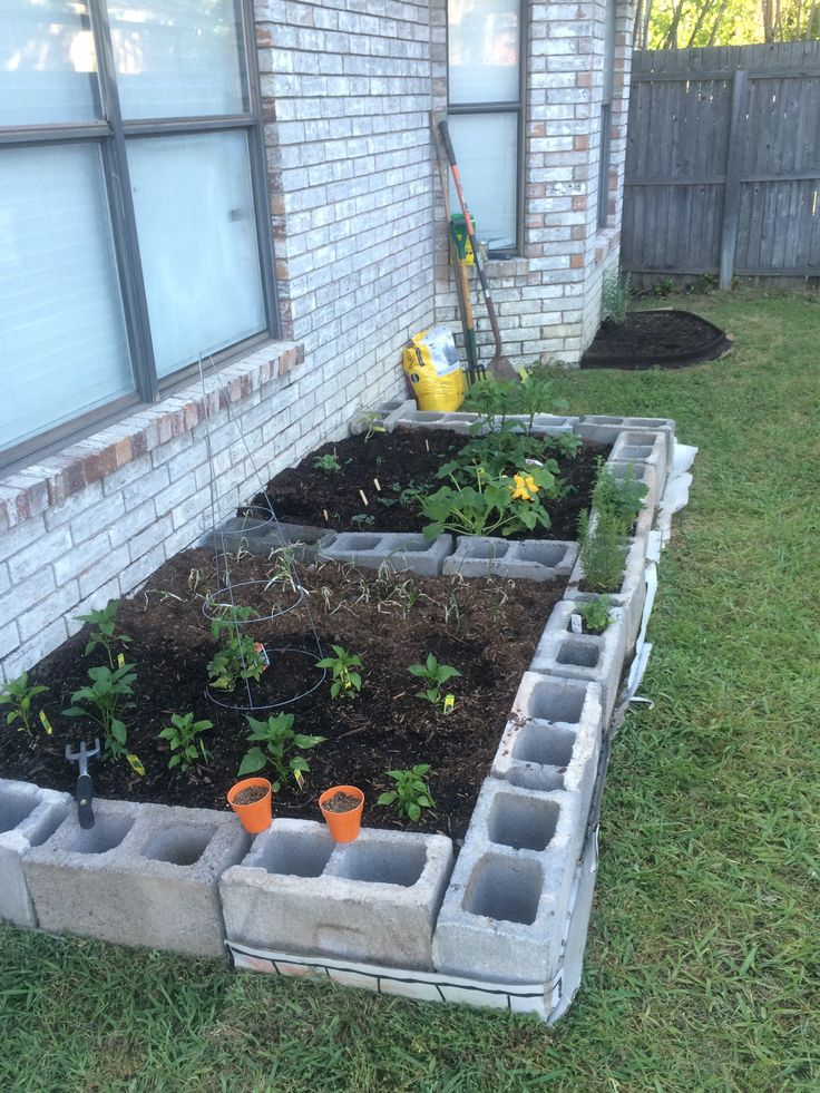 My Garden! Cinder Blocks from a friends farm, on sale dirt, compost, and manure from homedepot, old cardboard from the garage to smother the grass. Veggie plants and seeds from local nursery. Got it done for less than $150!
