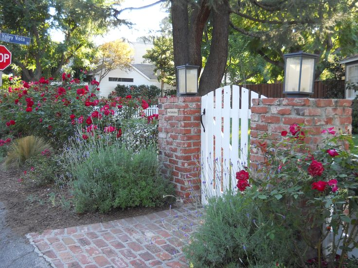 Climbing red roses and lavender with white wood fence and gate and true red brick pillars and walkway. Encino CA