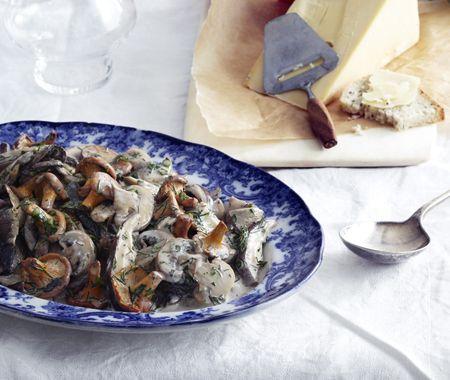 À la cueillette ou à l'achat, il faut choisir des champignons frais, jeunes et non véreux, et les consommer sans attendre car la plupart ne se gardent pas.