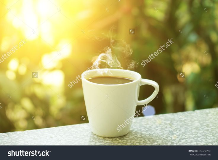Morning Stock Photos, Images, & Pictures   Shutterstock