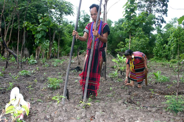 Brao Couple Planting Food - History of agriculture - Wikipedia, the free encyclopedia