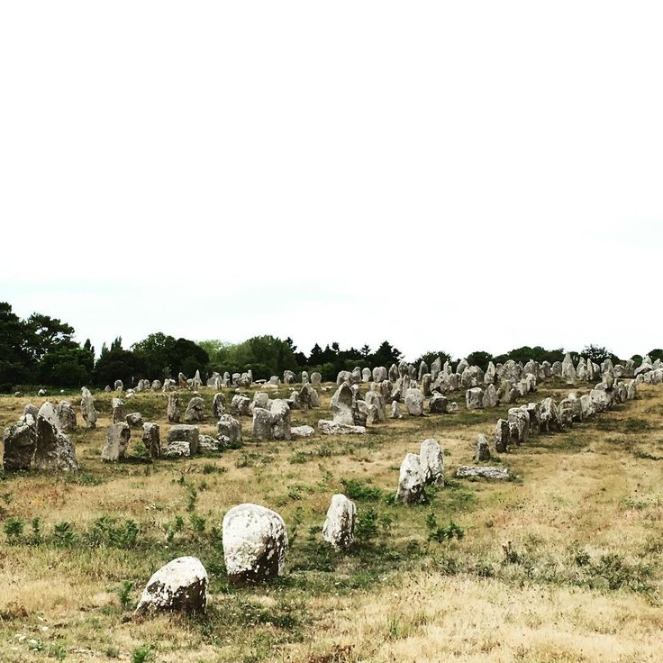 menhirs in Carnac, France // Hinkelsteine in Carnac, Frankreich // photography by mimifaktur
