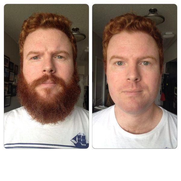 Celebrate No Shave November with some epic beards and beard-related humor (50  Pics)