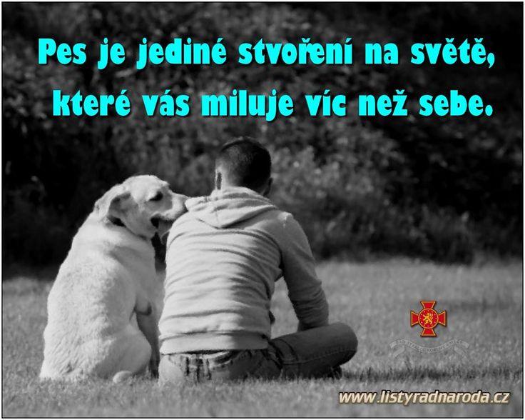 Hunden er den eneste skapning i verden,som elsker deg mere en seg selv....