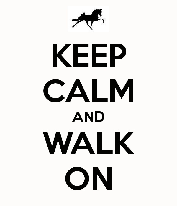 KEEP CALM -Tennessee Walking Horse