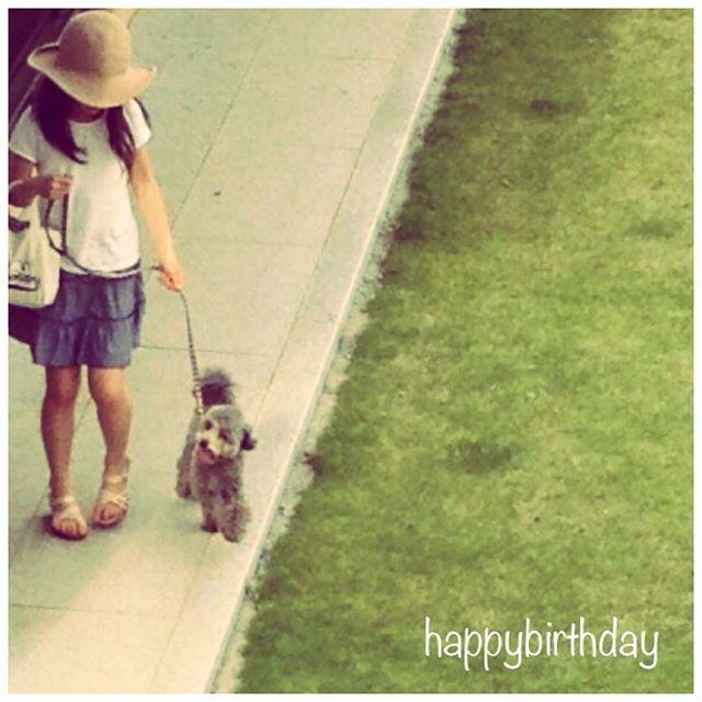 ✩✩✩ ・ ・ happybirthday  自分❤︎ ・ もう何歳なのか、覚えられなくなってきた🙄 大体、毎年お天気が悪かったけれど 今年は天の川もくっきりかしらね\❤︎/ ・ いつかの七夕のpic🎋 小さい娘と小さいginちゃん♪ ・ ・ #birthdaypower九州まで届きますように#七夕#お誕生日#誕生日 #お誕生日おめでとう #今日のginちゃん#犬 #犬バカ部 #いぬ部 #いぬら部 #ふわもこ部 #わんこ大好き #トイプードルシルバー#トイプードル部#シルバートイプードル #わんこなしでは生きていけません会#わんこ#愛犬#犬とねこ #いぬ  #birthday #happybirthday  #instapic #instagood #happiness #dogstagram #happybirthdaylove #toypoodlesilver #happybirthdaytome