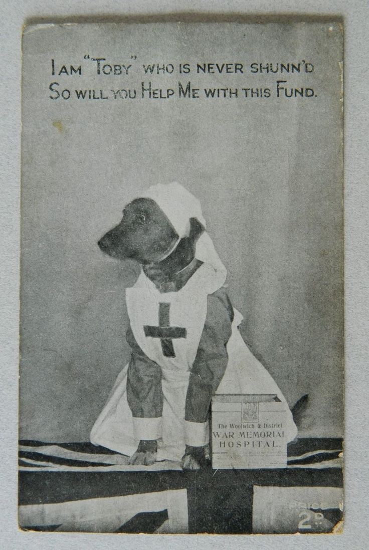 Red cross on pinterest red cross website american red cross and ww1 red cross dog collecting for charity postcard from antiquepooch on ruby lane xflitez Choice Image