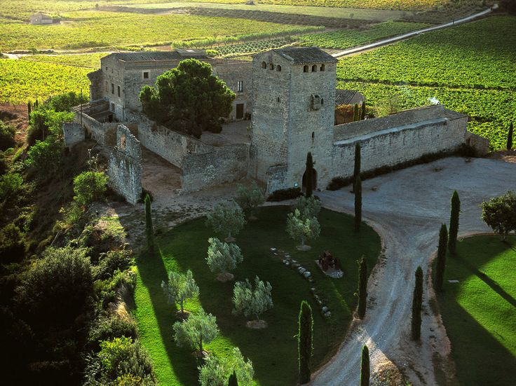 Milmanda de Bodegas Torres, Mejor Vino de España en su categoría según los periodistas especializados