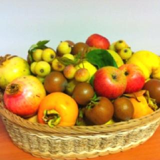 Frutta autunnale - Umbria