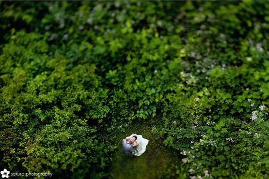 Diamond Alumni Centre | Sakura Photography | Vancouver Weddings