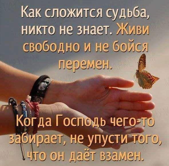 13495265_1162019630516270_7576645718110674391_n.jpg (591×581)