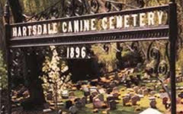 A New York da oggi cani, gatti e maialini vietnamiti potranno essere sepolti insieme ai propri padroni #new #york #cani #cimiteri