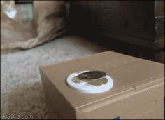 Tumblr: 4gifs: you seein this? [video]