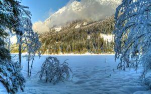 Vista previa de fondo de pantalla de invierno, nieve, árboles, colinas, soleado…