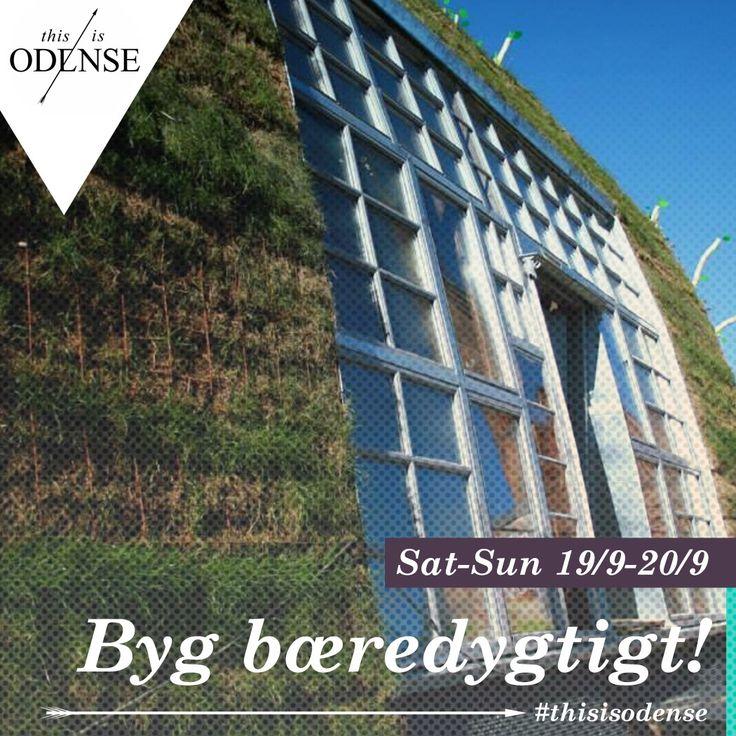 Byg bæredygtigt. Grøn workshop lørdag d. 19. sep. og Søndag d. 20. sep. kl. 09:00-16:00. Læs anbefalingen på: http://www.thisisodense.dk/da/20491/byg-baeredygtigt