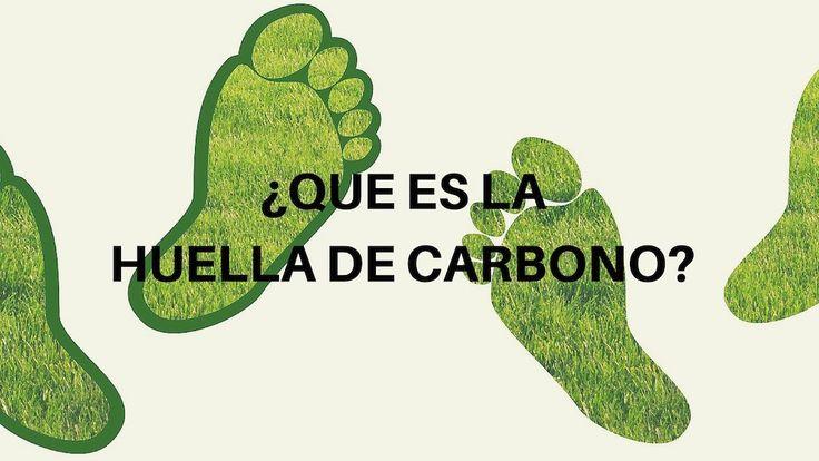 ¿Qué es la huella de carbono?