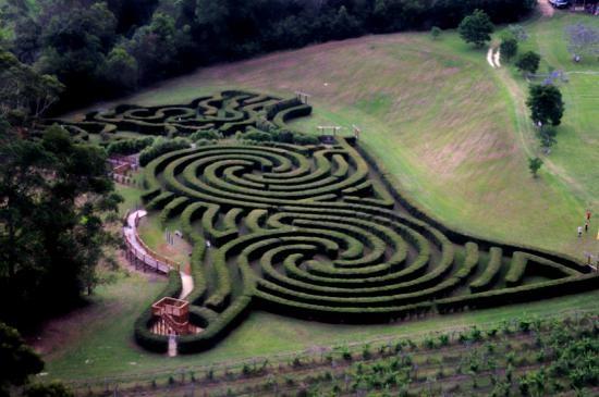Bago Maze at Bago Vineyards, Wauchope, New South Wales, Australia, opened 2/12/2012  Nice twin vortex design @james mobbs