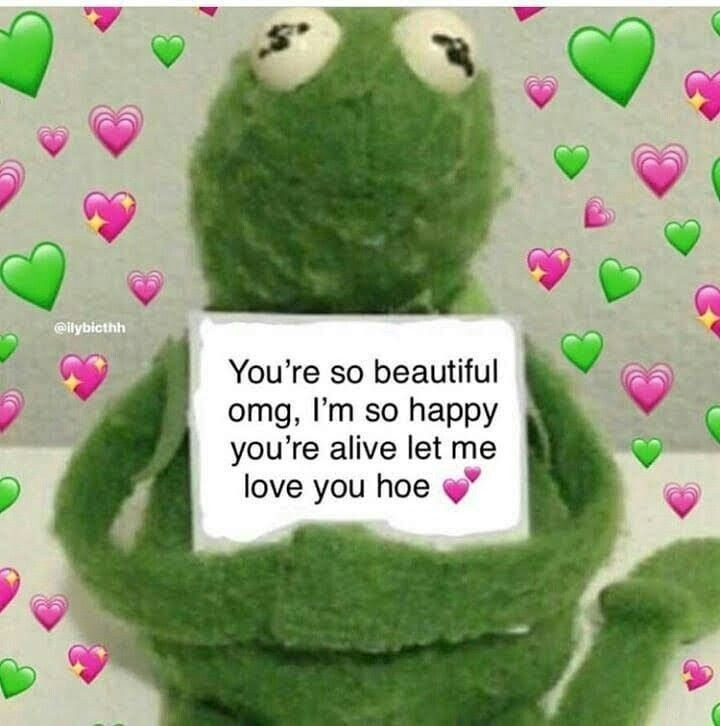 Pin By Whothefuckiam On Vs Love You Meme Cute Love Memes Love Memes