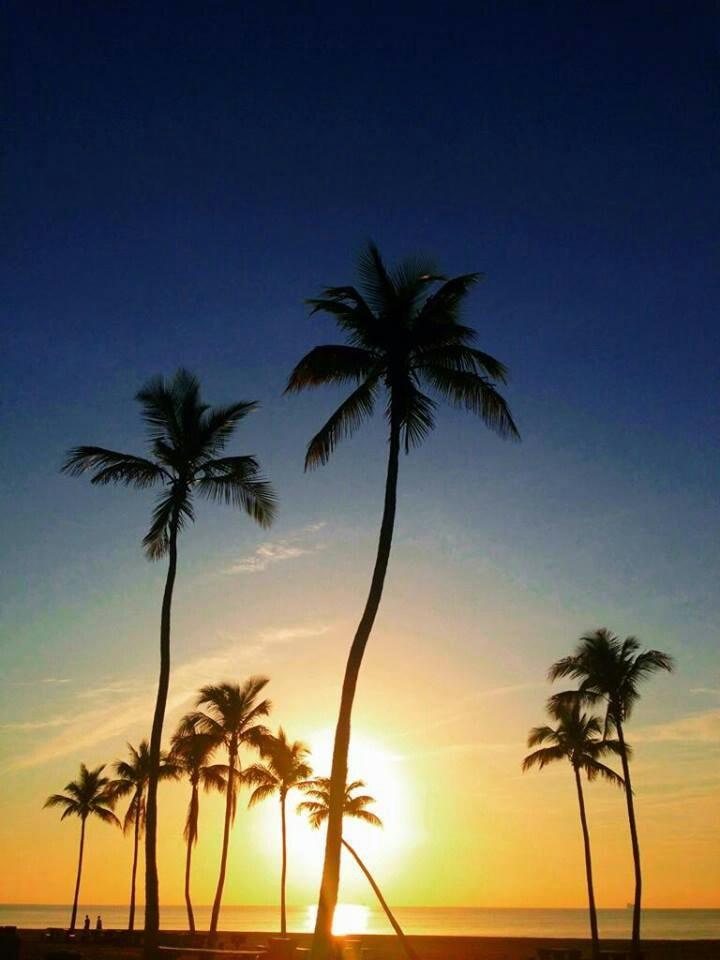 Fort lauderdale sunrise swingers Healthcare Specialist Jobs, Employment in Sunrise, FL,