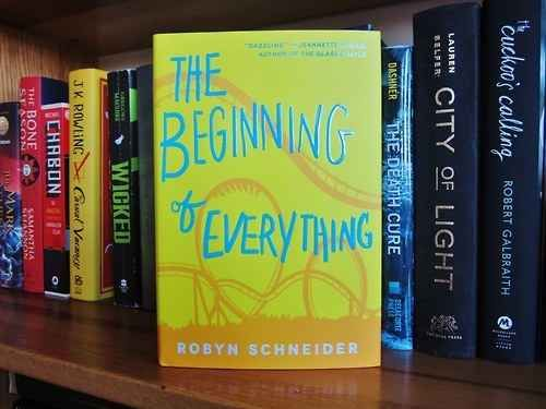 "The Beginning of Everything , Robyn Schneider | 17 Books To Read If You Liked ""The Fault In Our Stars"""