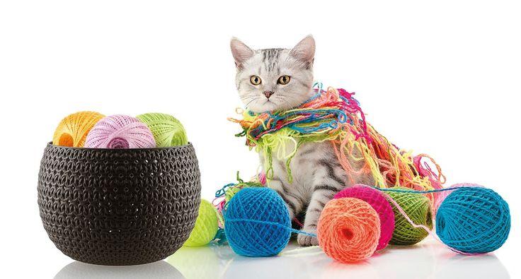 Örme Hobi Sepet / Knit Hobby Basket Rengarenk iplerinizi şık ve estetik sepetlerde saklayabilirsiniz. #knitdesign #cat #colors
