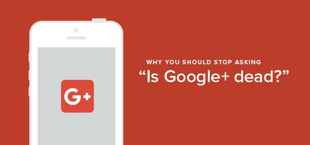 How Important Is Google Plus? - Spree Marketing Shows You