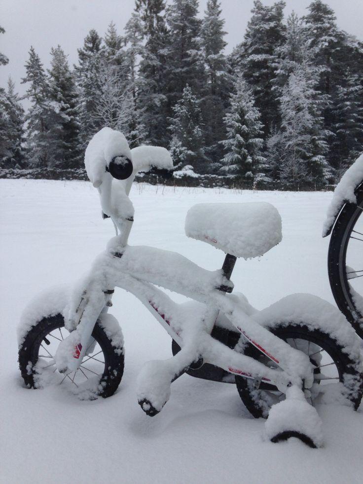 Winter is not over yet!