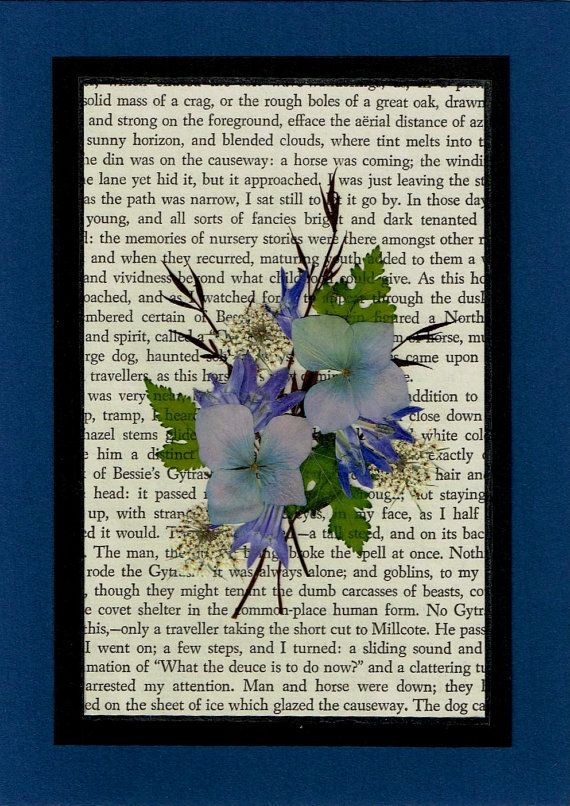 Pressed Flowers on text - maybe something sentimental to do with Daddy's flowers as gifts to family?