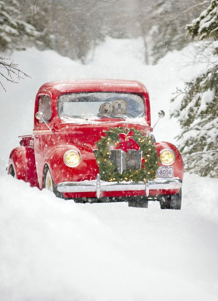 Amazon.com : Avanti Christmas Cards, Old Fashioned Truck, 10 Count : Blank Greeting Cards : Office Products