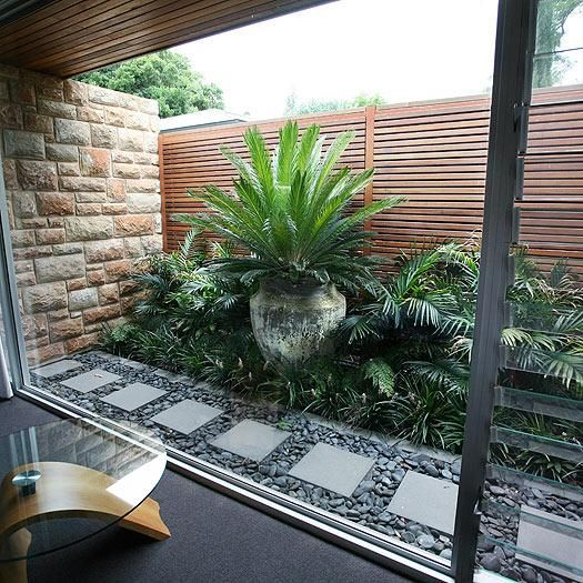 mixed garden, a pot in bushes, palms grasses, looks good w the grey and charcoal View photos from Craig Gibson's inspiration board 7 Must-Read Ideas to Maximise Your Space on hipages.com.au