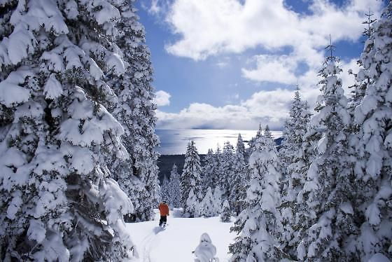 50 Things to Do in Lake Tahoe in Winter | Can't wait to go back to my home away from home!