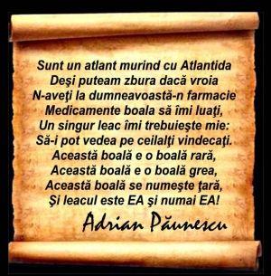 b_300_305_16777215_0___images_stories_analize_testament-adrian-paunescu.jpg (300×305)