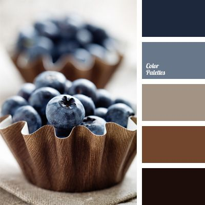 Fresh blueberries in brown baskets. Solid dark blue, almost black and calm brown color. Color of blueberry is a good solution for decoration. It attracts the eye, but distracting. This color scheme will give a unique charm to everything, where it will be present.