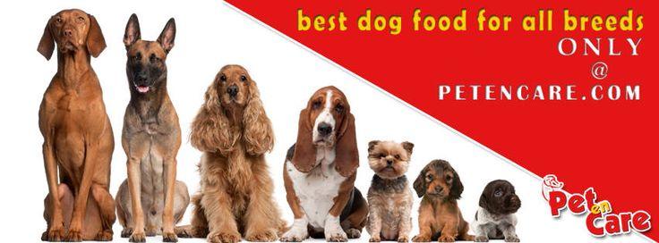 Evo Dog Food Diabetes