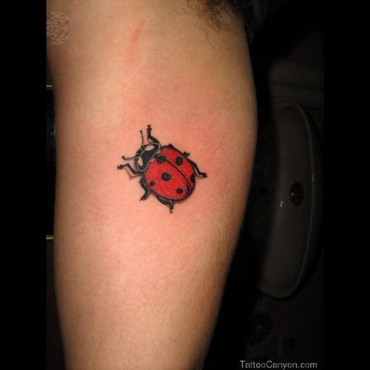 Small Ladybug Tattoos