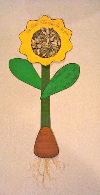 Sunflower- do as a take home project and use a ziplock of sunflower seeds behind the flower as a snack while they tell mom and dad about the parts of a flower.