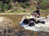 Ensenada Excursions & Ensenada Shore Excursions