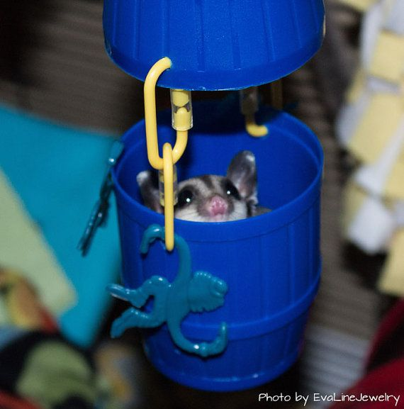 Put these monkeys around your sugar gliders cage and watch as they scurry to pick them up. Use the barrel for hiding treats or add a blanket for your suggie to get cozy inside their new hideout. Approx. 3W x 8L when hanging from included cage hooks. Each barrel comes with (12)