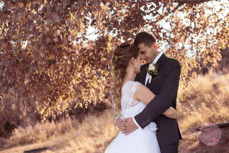 kostol, svadba, pár, modlitba, bride, grome, wedding, jeseň, autum, tree, strom, orange,